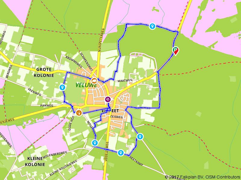 Door de Veluwse bossen rondom Elspeet