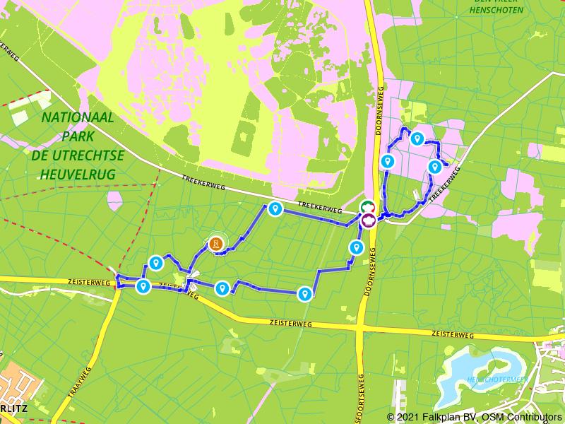 Wandelen door de bossen van de Utrechtse Heuvelrug