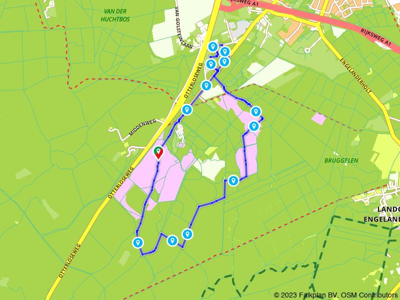 Wandelen door de bossen van de Veluwe